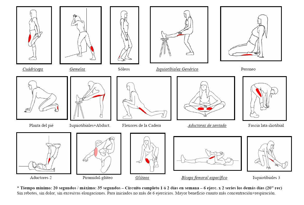 http://semanacincuentaydos.files.wordpress.com/2012/06/elongacion.jpg