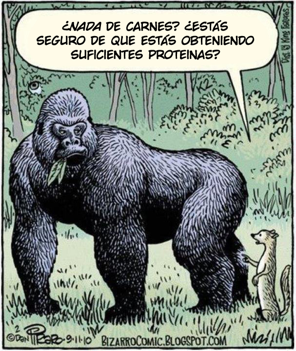 No-meat-gorilla