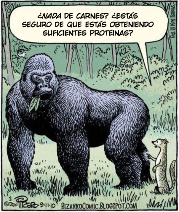 No-meat-gorilla