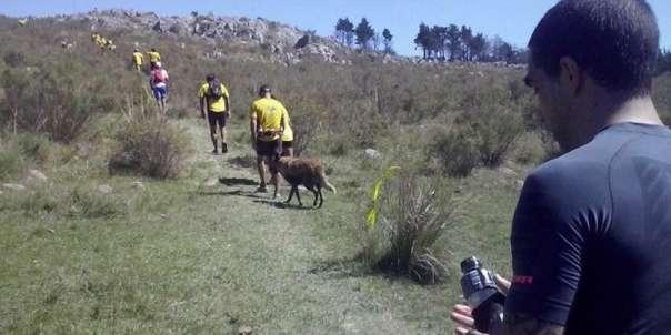 Terma Adventure Race Tandil 2015